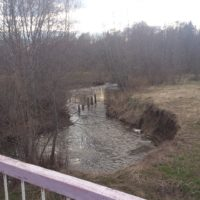 Поиск монет, кладов и железа по берегам рек и водоёмов