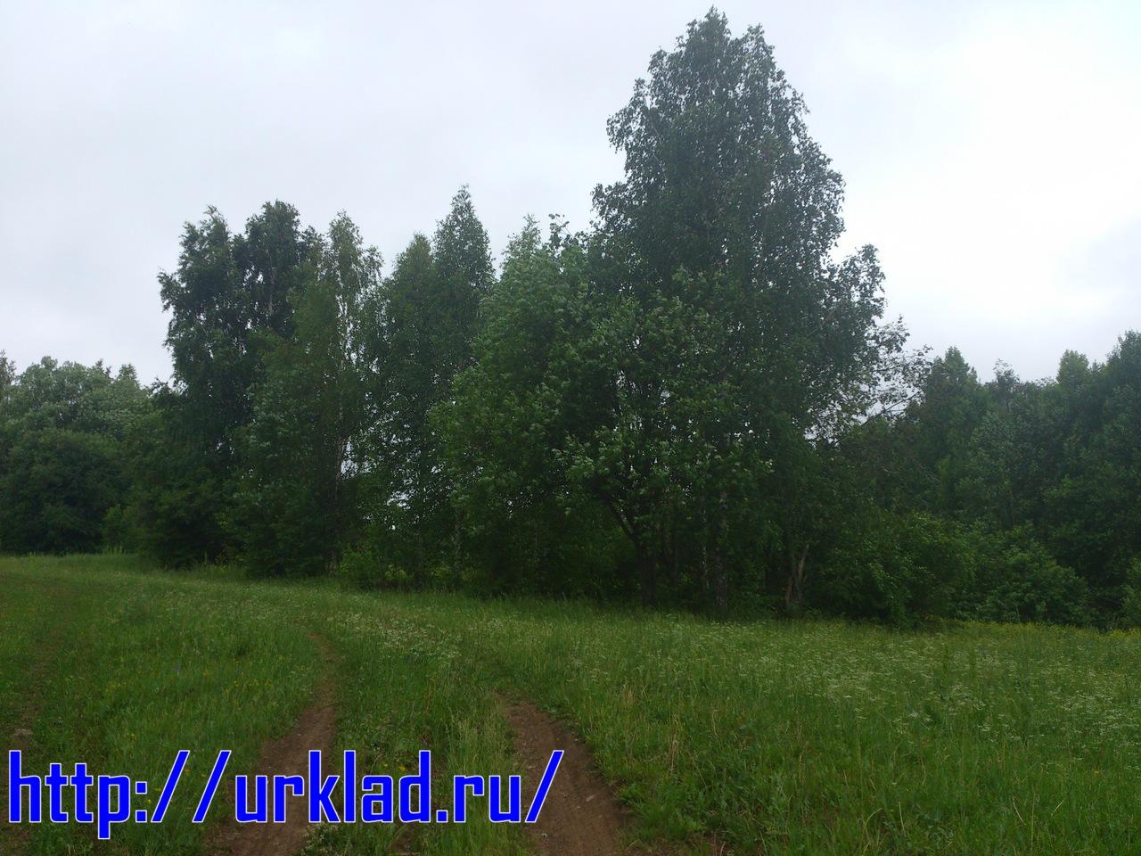 DSC_1563