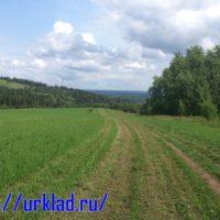 Прогулка вдоль заросшей деревни или знак свыше. 1 копейка 1798.