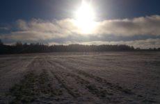 Зимний поиск или поиски поздней осенью
