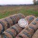 Поиск монет и кладов в полях
