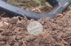 Поиск монет по высокой траве. Полушка 1851 года Николая 1