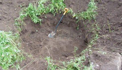 Шурф фундамента и поиск монет на свежеубранном поле возле старинной деревни. Отчет с длинного копа