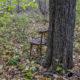 Какие опасности поджидают человека в лесу и на полях осенью