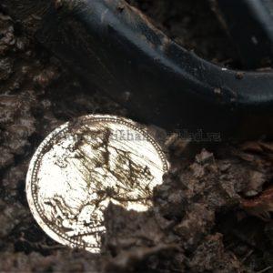 Где искать монеты весной?