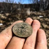 Из находок — царские монеты! Поиски продолжаются