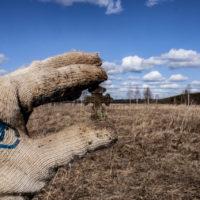 Проверили трактовую деревню с металлоискателем по прижатой траве