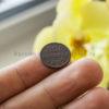 Медные полкопейки 1927 года − редкая ли монета?
