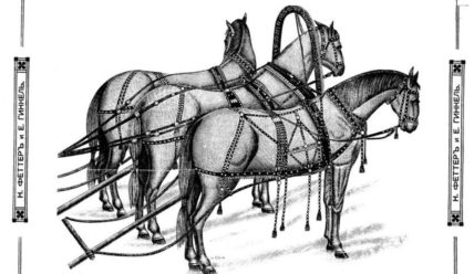 Каталог «конины». Определитель элементов конской сбруи