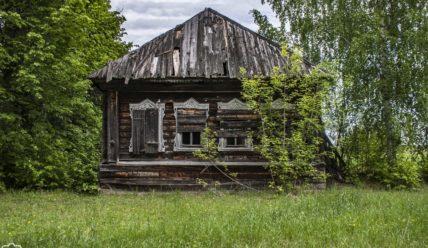 Зарастающий лесом: починок Покровский, покинутый людьми