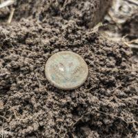 Монеты с окраин хутора. Попалась даже александровская «пчёлка»