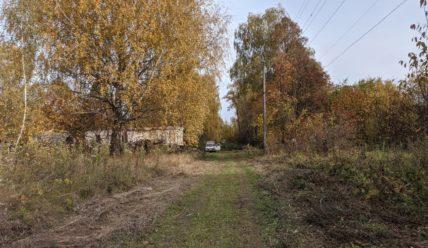 Деревенская осень. Прогулка по хутору в «золотом» облачении