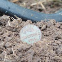 Среди высокой травы нашёл полушку Николая I. Летний выезд с металлоискателем
